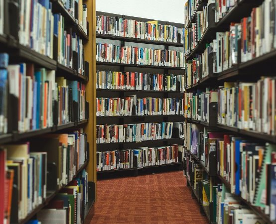 """Biblioteka Bytom:  Organizacja """"Dni Bytomia"""""""